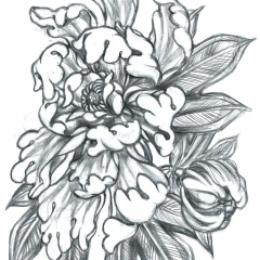 crysanthemum-flower-tattoo-design