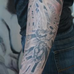 Healed Snake Tattoo