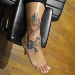 rainbow-phoenix-tattoo